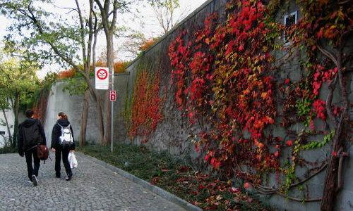 チューリッヒの秋