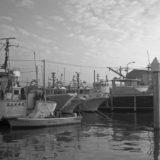 引き続きライカM3で試写(船橋港)