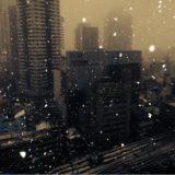 雪(大阪 梅田)