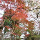 秋の京都でお散歩 (毘沙門堂)