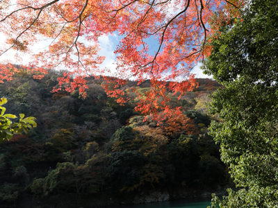 2017 秋 嵐山