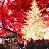 恵比寿ガーデンプレイスと宝鏡寺門跡で多重露光