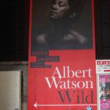 Kyoto Graphie 2019(1) Albert Watson